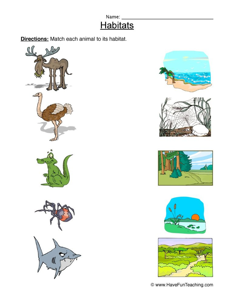 2nd Grade Habitat Worksheets Matching Animal Habitats Worksheet