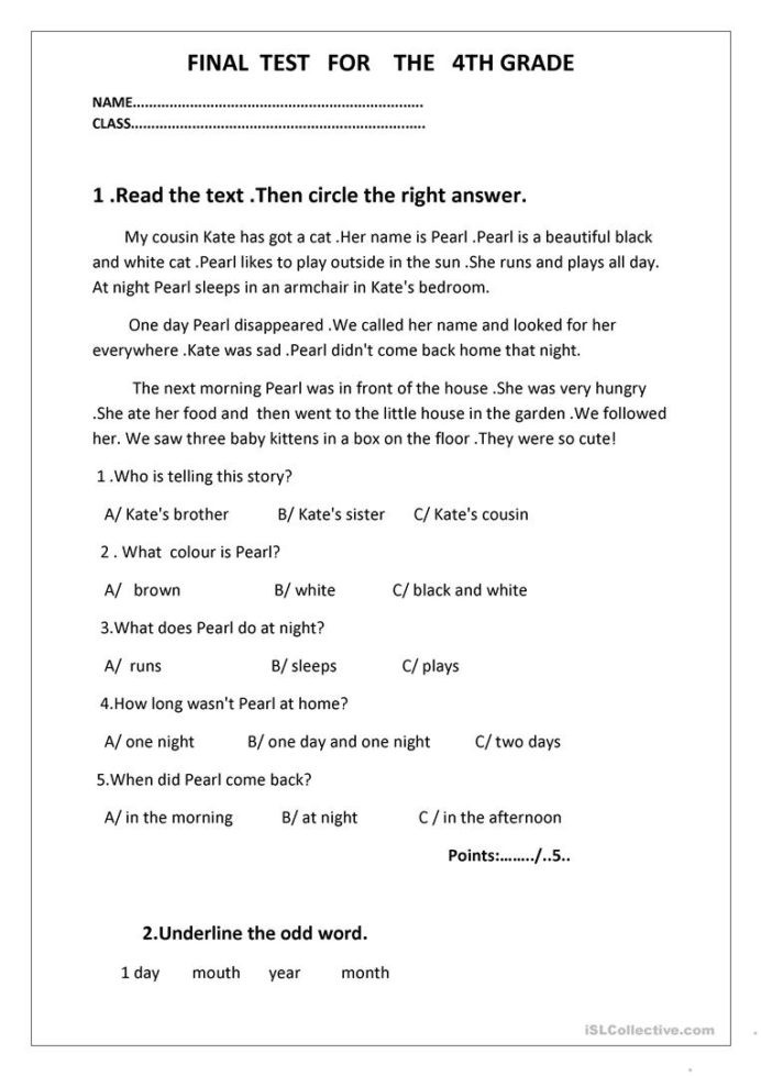 4th Grade English Worksheets Final Test for the 4th Grade English Esl Worksheets Distance