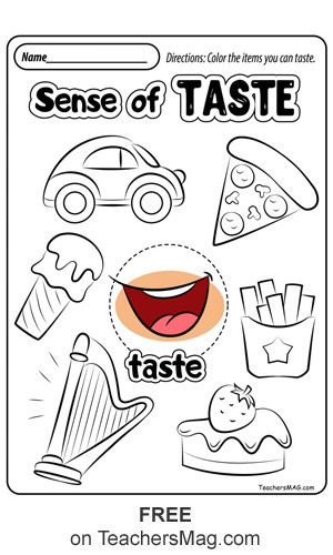 5 Senses Worksheets for Kindergarten Free Five Senses Worksheets