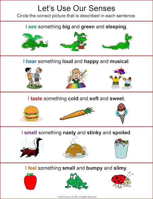 5 Senses Worksheets Kindergarten Let S Use Our Senses