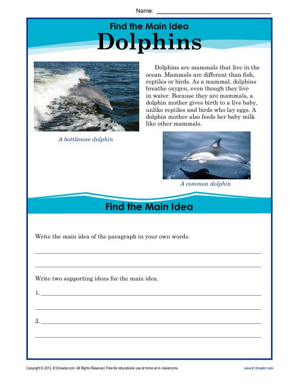 5th Grade Main Idea Worksheet 5th Grade Main Idea Worksheet About Dolphins