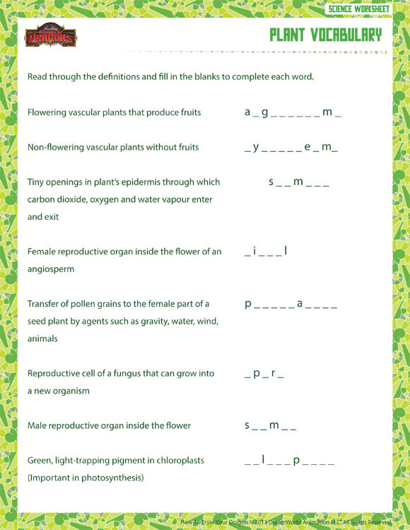 6th Grade Science Worksheets Plant Vocabulary View – 6th Grade Life Science Worksheet – sod
