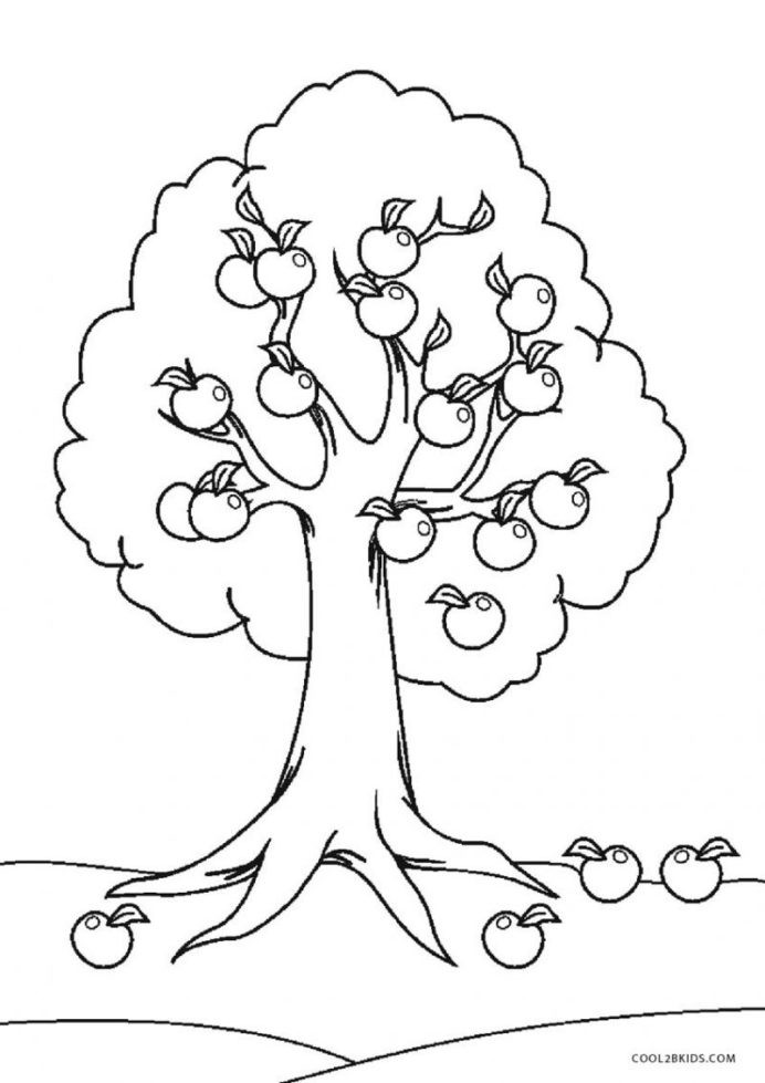Apple Worksheets Kindergarten Coloring Printable Tree for Kids Worksheets Kindergarten