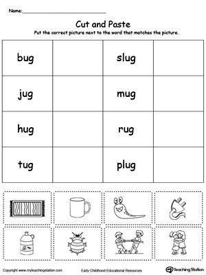 Categorizing Worksheets for 1st Grade Early Childhood sorting and Categorizing Worksheets