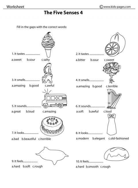 Free Printable Five Senses Worksheets the Five Senses 4 B&w Worksheet