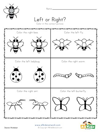 Insect Worksheets for First Grade Bugs Left and Right Worksheet