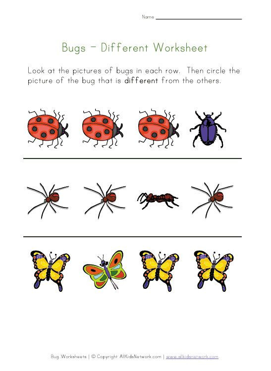 Insects Worksheets for Kindergarten Bugs Worksheet Recognize Different Insects