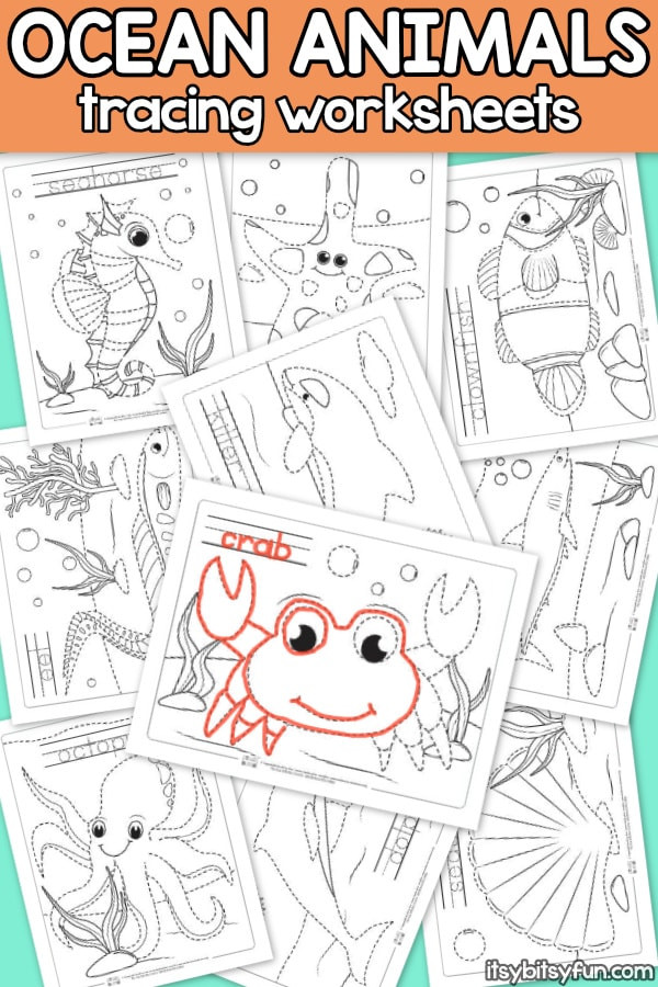 Kindergarten Ocean Worksheets Ocean Animals Tracing Worksheets Itsybitsyfun