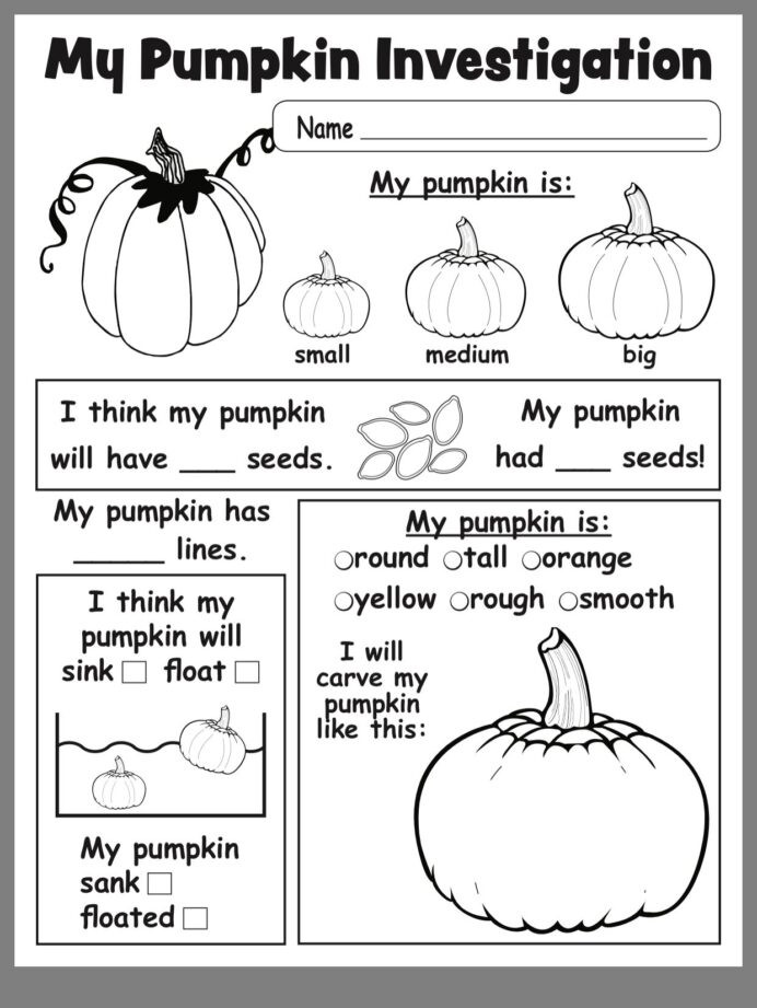 Kindergarten Science Worksheets Pumpkin Investigation Kindergarten Science Lessons