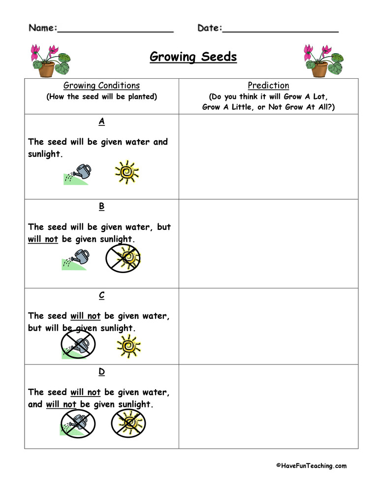 Making Predictions Worksheets 3rd Grade Plant Predict and Infer Worksheet