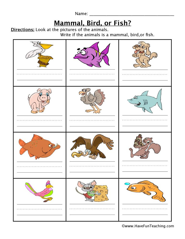 Mammals Worksheet First Grade Mammal Fish Bird Worksheet