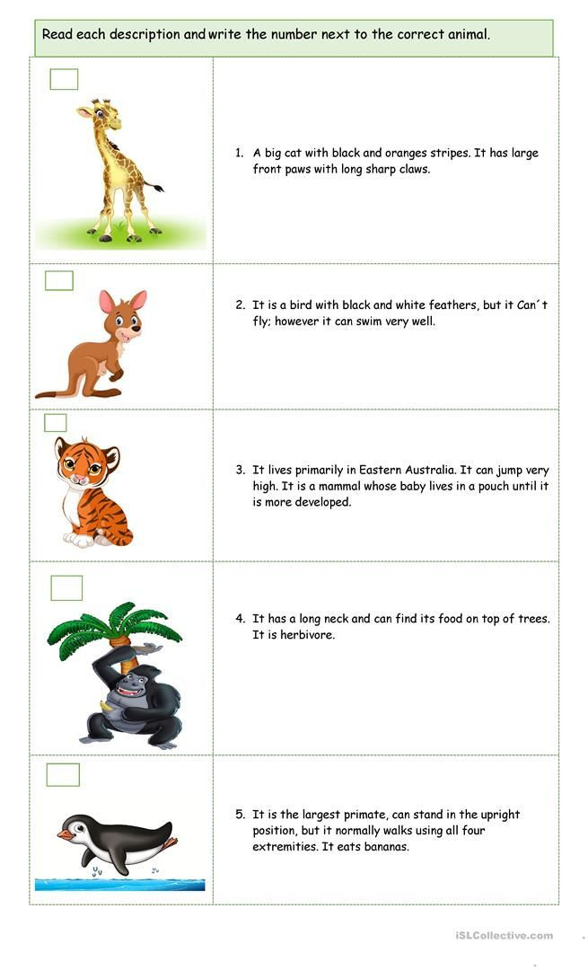 Mammals Worksheets for 2nd Grade A Trip In the Zoo