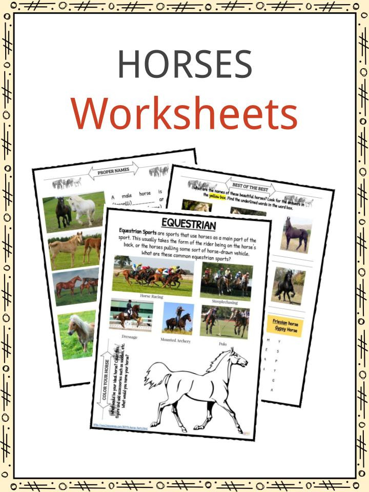 Printable Horse Anatomy Worksheets Horse Facts and Worksheets for Kids • Kidskonnect