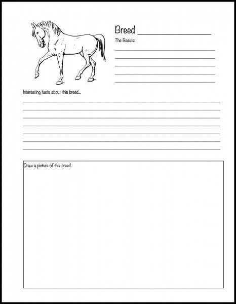Printable Horse Anatomy Worksheets Ultimate Homeschool List for Horse Lovers