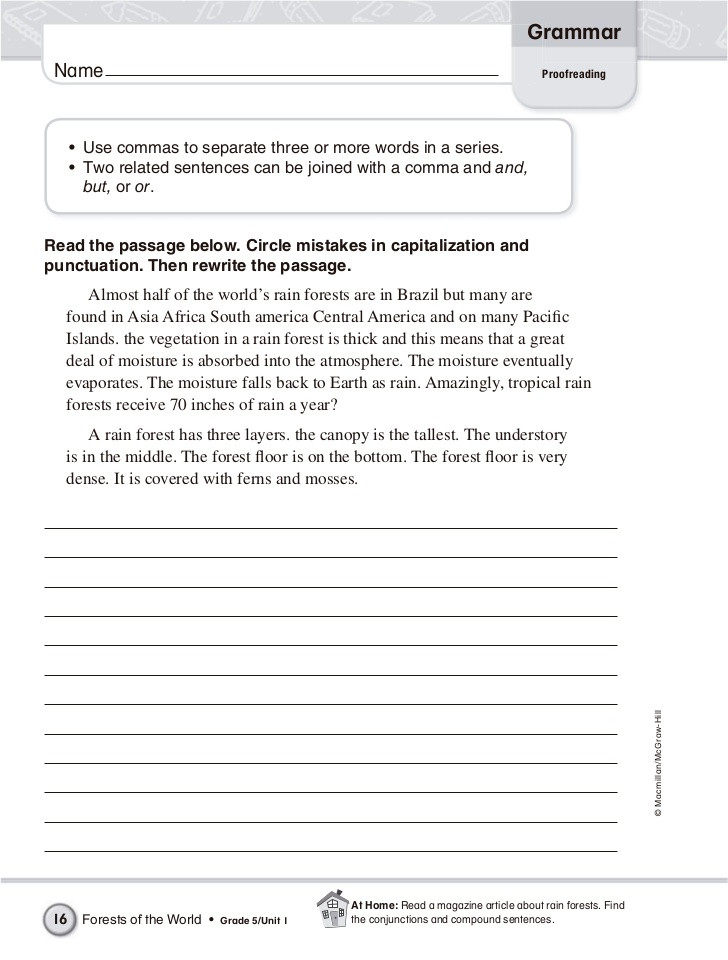 Proofreading Worksheets 5th Grade English Grammar 5th Grade