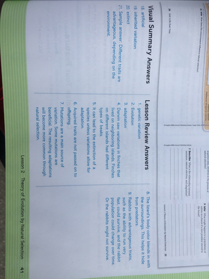 Science Fusion Grade 3 Worksheets Science