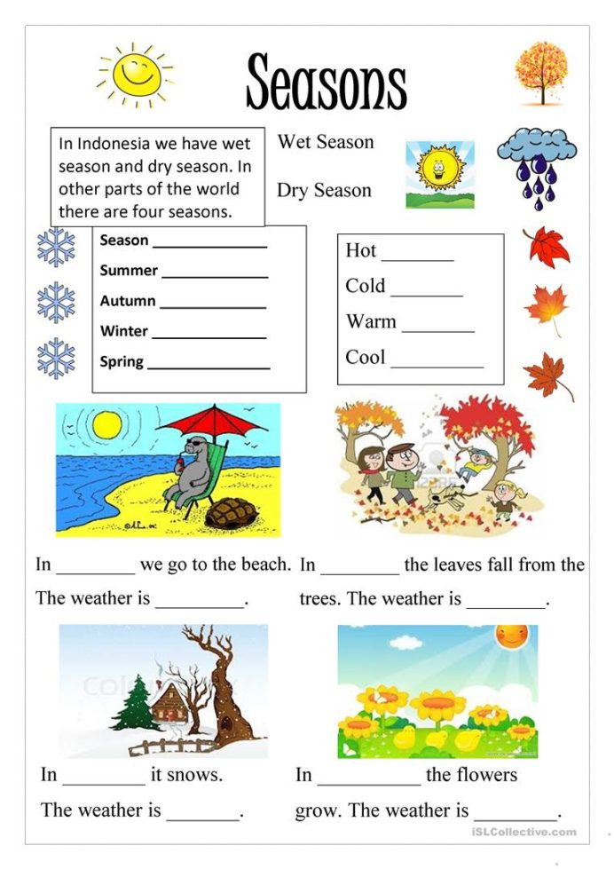 Seasons Worksheets for First Grade Free Printable Seasons Activities Worksheets First Grade