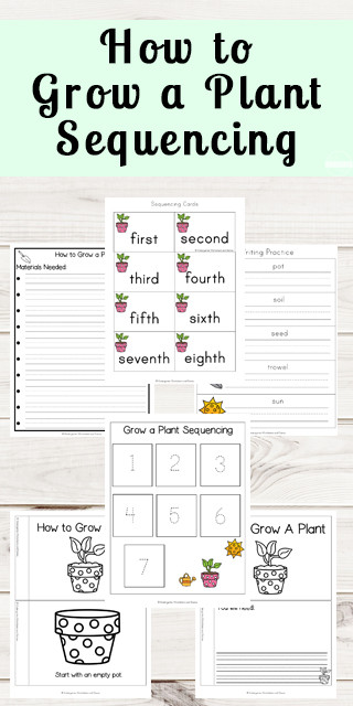Sequencing Worksheets for Kindergarten Free Grow A Plant Sequencing Worksheets