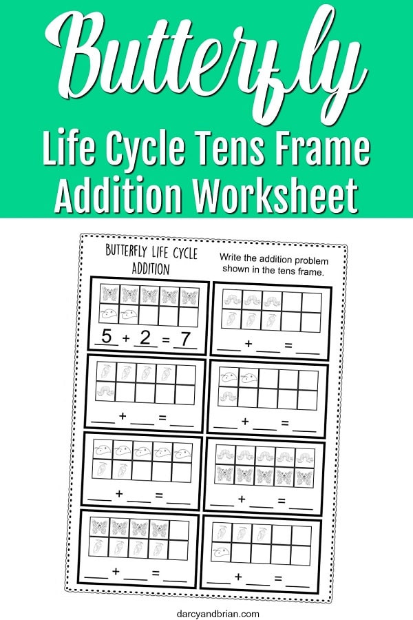 Ten Frame Worksheets Kindergarten Worksheet butterfly Frame Worksheet Pin Life Cycle
