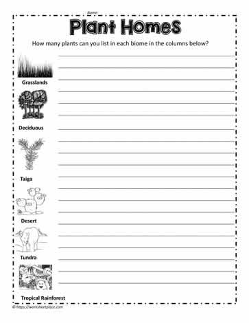 3rd Grade Habitat Worksheets Plant Biome Homes Worksheets