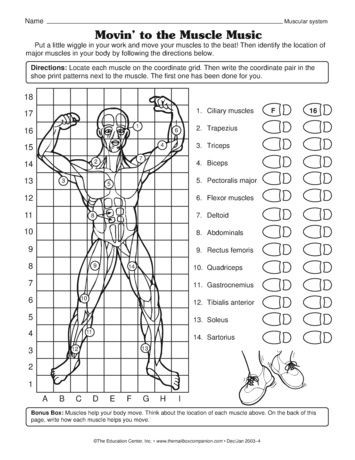 3rd Grade Human Body Worksheets Movin to the Muscle Music Science Worksheet Muscular