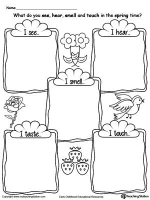 5 Senses Printable Worksheets the Five Senses In the Spring Time