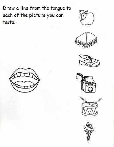 5 Senses Worksheet for Kindergarten 5 Senses Worksheet for Kids 2