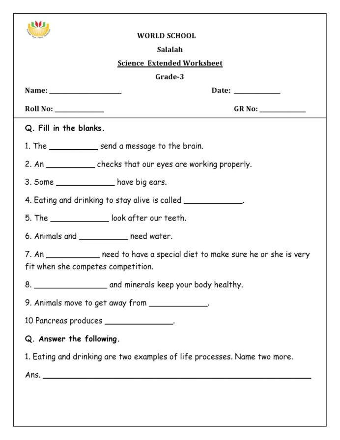 5th Grade Science Practice Worksheets Year Science assessment Worksheet with Answers Humans
