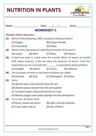 7 Grade Science Worksheets Class 7 Science Worksheets – Keepyourheadup