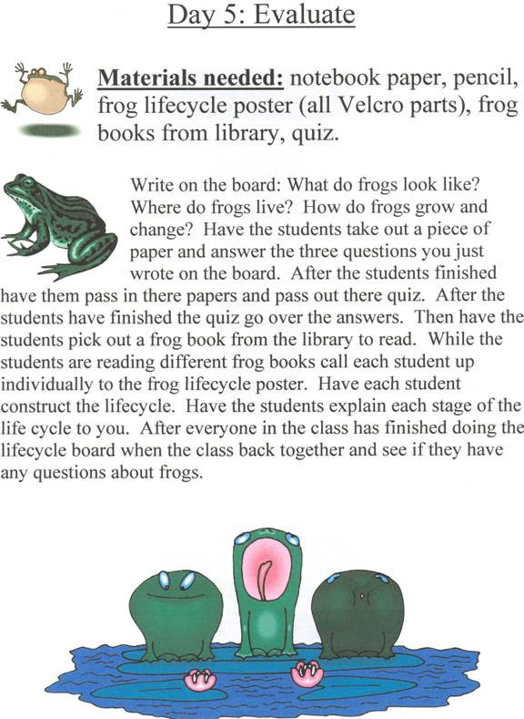 Amphibian Worksheets for Second Grade Frogs Life Cycle