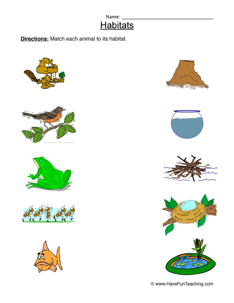 Animal Habitat Worksheets for Kindergarten Animal Habitats Matching Worksheet • Have Fun Teaching
