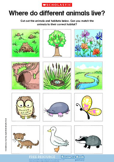 Animal Habitat Worksheets for Kindergarten Animal Worksheet New 335 Animal Habitats Worksheets Ks1