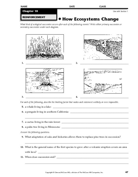 Ecosystem Worksheets 4th Grade How Ecosystems Change Worksheet for 4th 6th Grade