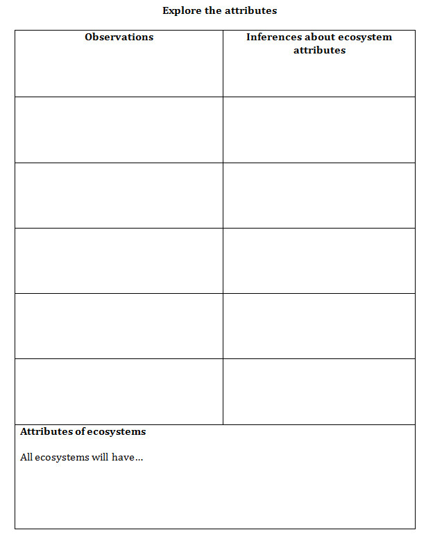 Ecosystem Worksheets 4th Grade Lesson 1 What is An Ecosystem