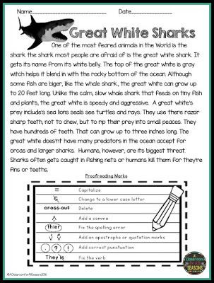 Editing Worksheets 2nd Grade Proofreading and Editing Reading Prehension Passages