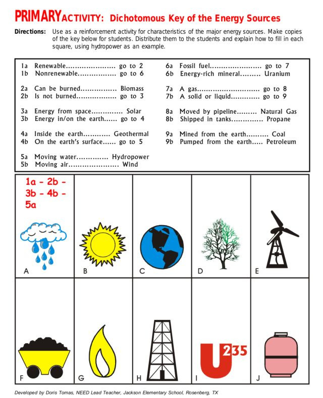 Energy 4th Grade Worksheets Primary Activity Dichotomous Key Of Energy sources
