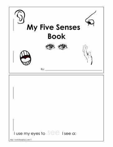 Five Senses Kindergarten Worksheet 5 Senses Booklet