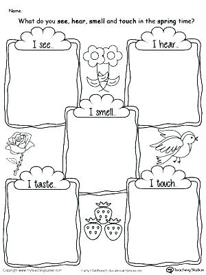 Five Senses Worksheets Kindergarten 5 Senses Kindergarten Five 5 Senses Kindergarten Video