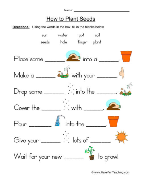 Free Fourth Grade Science Worksheets Life Science Worksheets • Have Fun Teaching