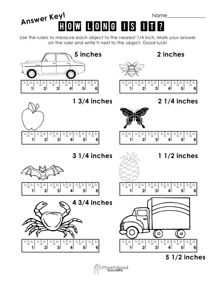 Free Measurement Worksheets Grade 1 Measurement Practice 1 ในปี 2020