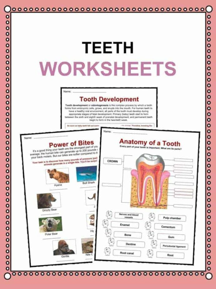 Free Printable Computer Worksheets Brushing Your Teeth Worksheet Printable Worksheets and