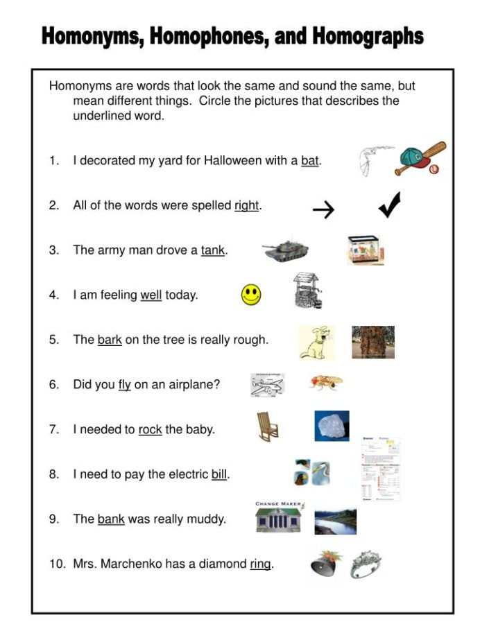 Homophones Worksheet 5th Grade Homonyms Homophones and Homographs Powerpoint Presentation