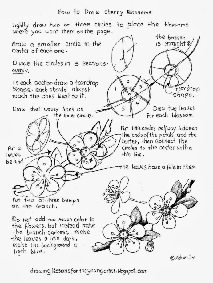 Japanese Worksheets Printable to Draw Blossoms Free Drawing Worksheet Printable Japanese