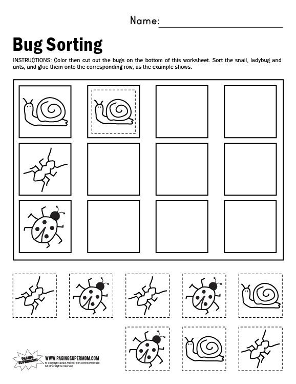 Kindergarten sorting Worksheets Bug sorting Worksheet