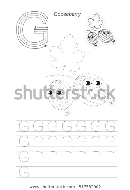 Letter G Worksheet Preschool Vector Illustrated Worksheet Preschool Children Learn เวก