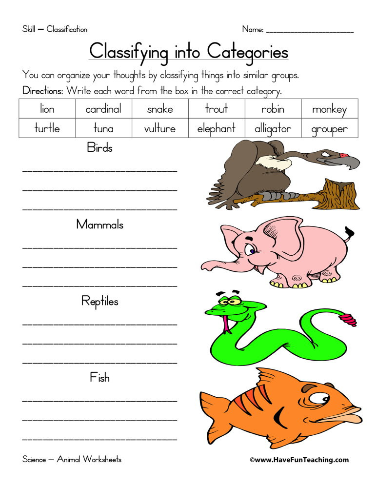 Mammal Worksheets First Grade Animal Classification Worksheet