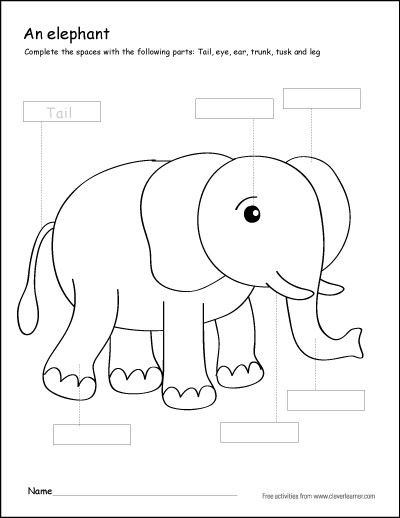 Mammal Worksheets First Grade Colour the Parts Of the Elephant