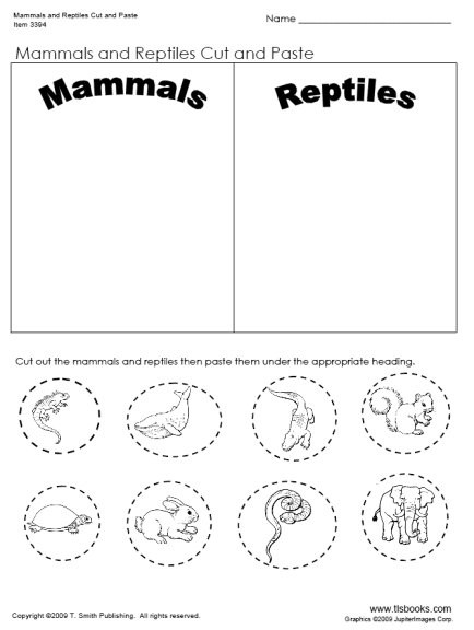 Mammal Worksheets First Grade Mammals and Reptiles Cut and Paste Worksheet
