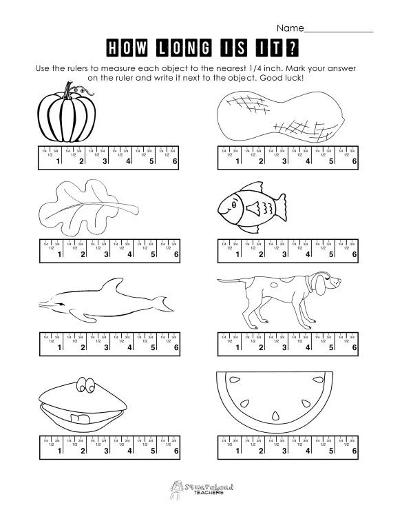 Measurement Worksheets for 2nd Grade Measurement Practice 2