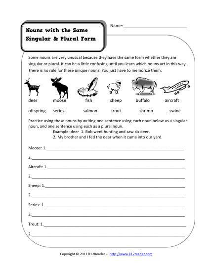 Plural Nouns Worksheet 5th Grade Same Singular and Plural Nouns